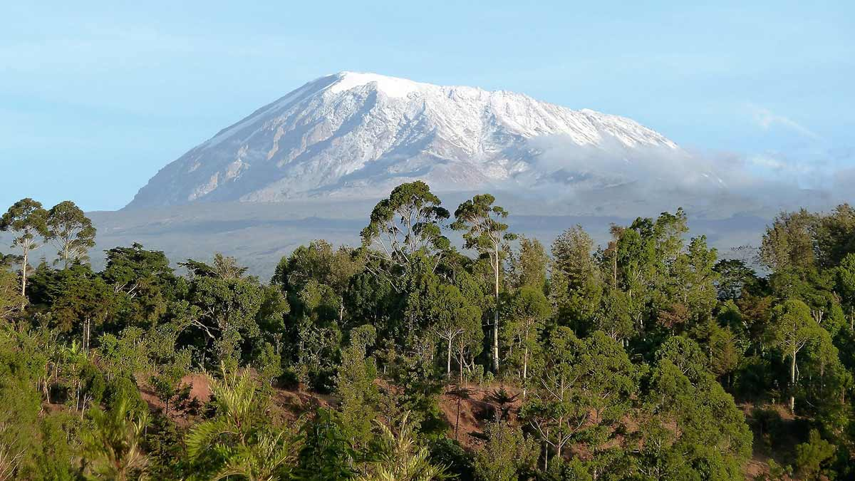 kilimanjaro-show-ice-cap